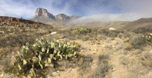 2017-12-31 Guad NP peaks and prickly pear*