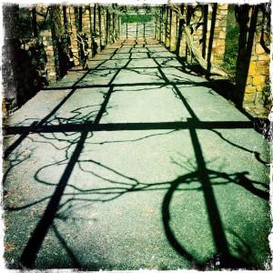 Shadows at Cross Estate