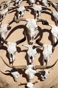 skulls, Marathon, Gage Hotel 2 FE*